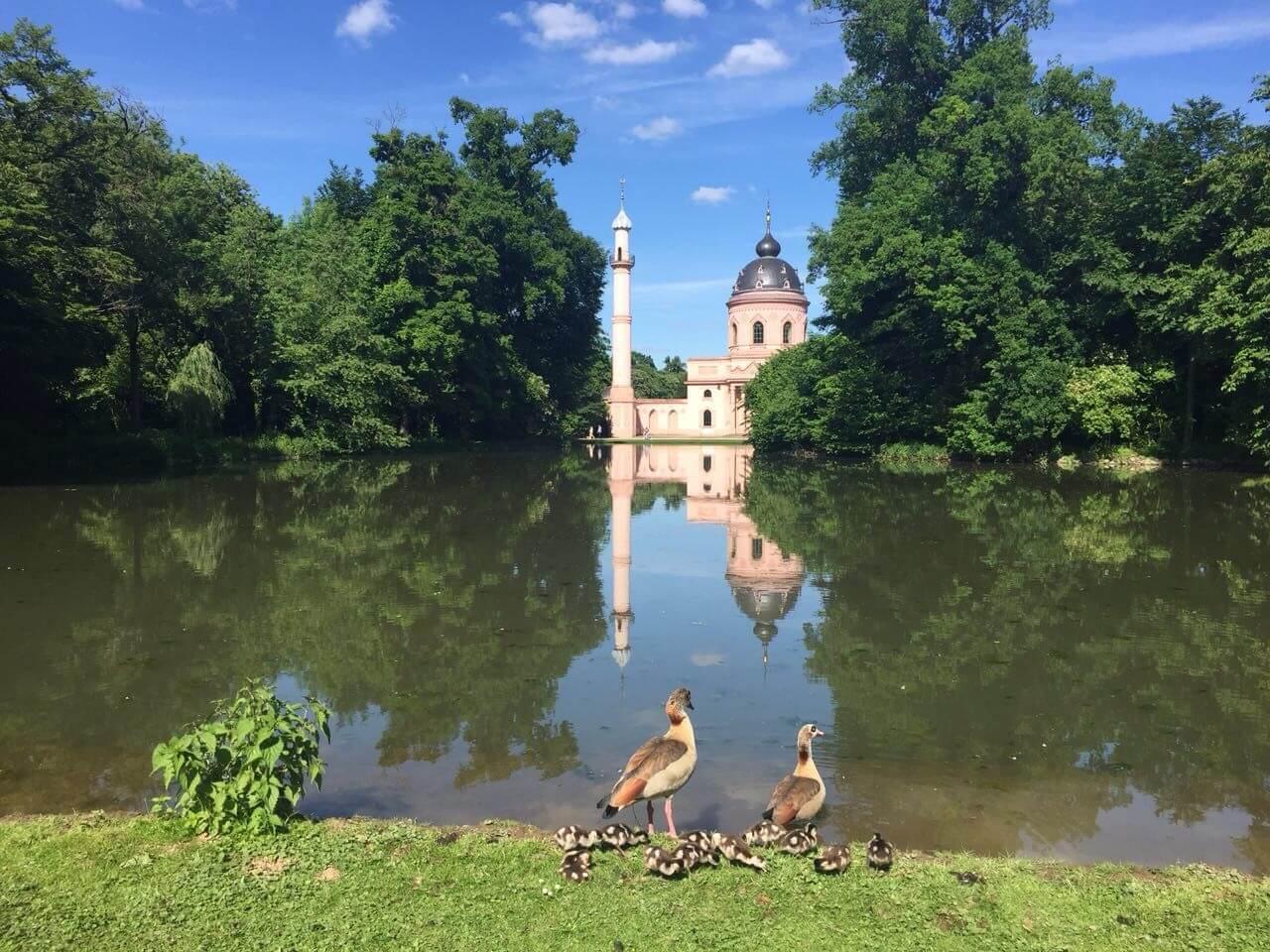 Dünyanın En Güzel 15 Camisi
