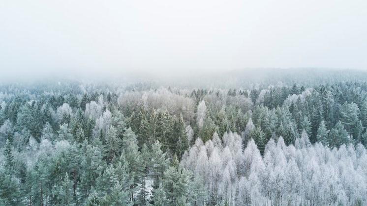 Muhteşem Kış Fotoğrafları