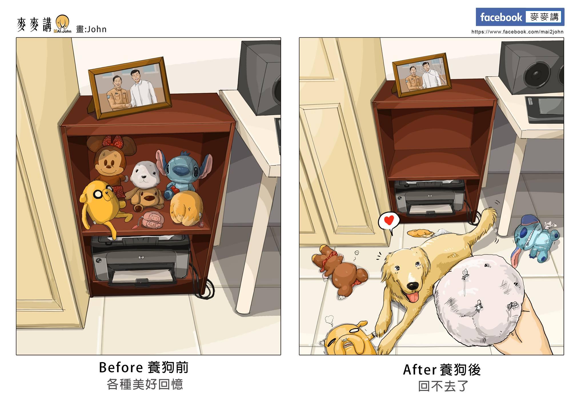 Hayvan Sahiplenmeden Öncesi ve Sonrası