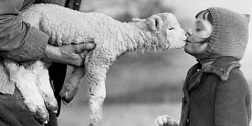 Çocukların Enteresan Hayvan Sevgileri
