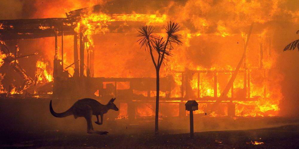 Avustralya Yangını Korkunç Boyutlarda