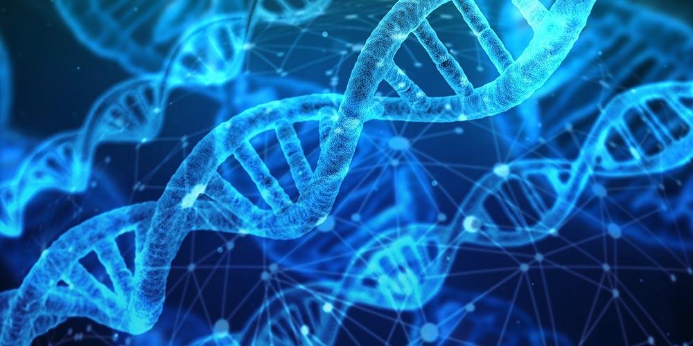Biyoloji Bilimi