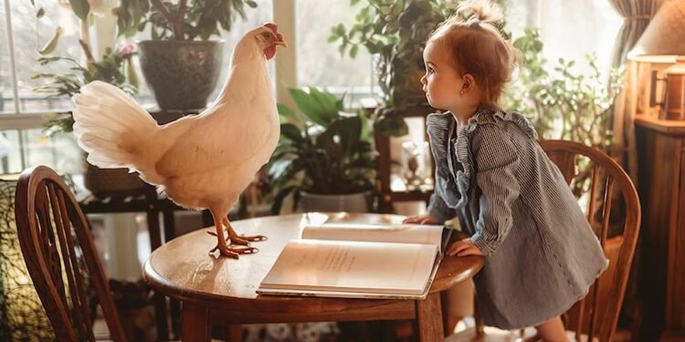 Çocuklar ve Hayvanlar Arasındaki Dostluk