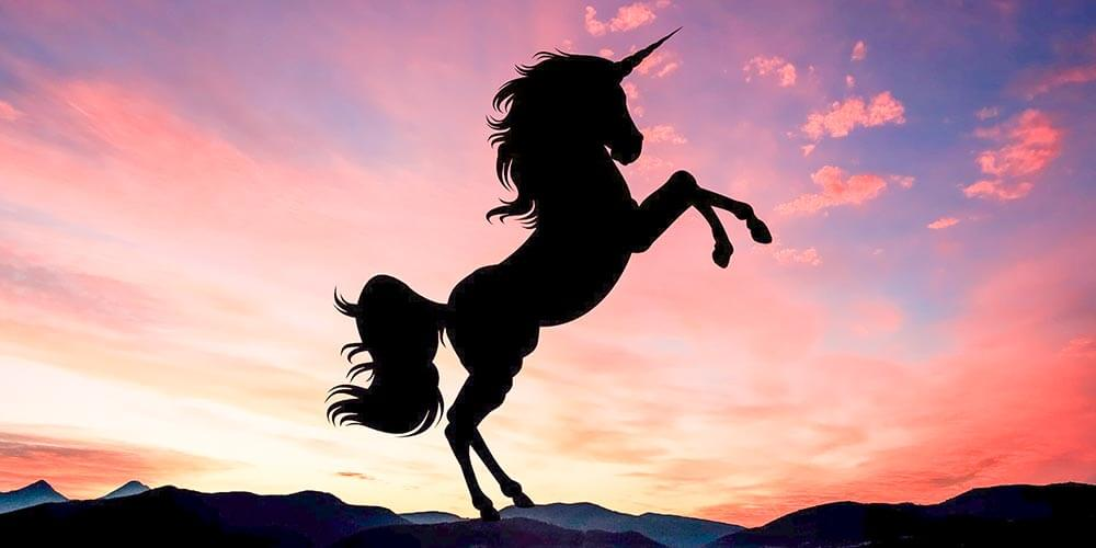 Girişimcilik Dünyasında Unicorn Olmak