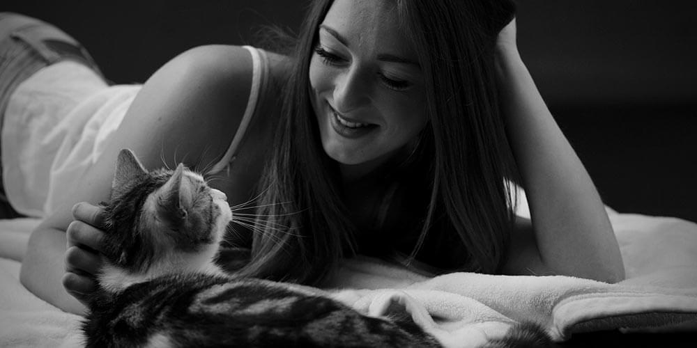 Kedilerle Uyumak