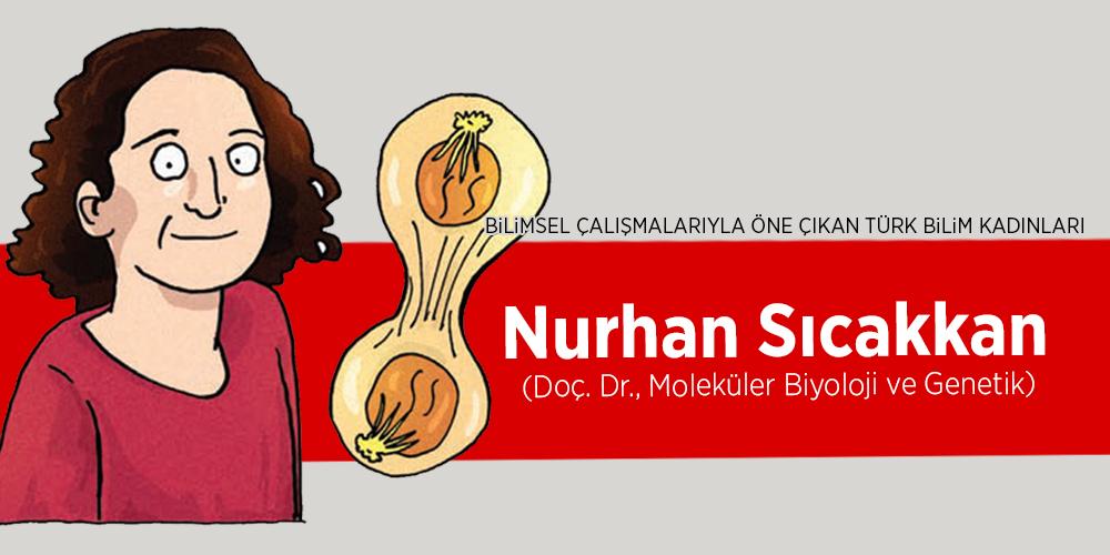 Nurhan Özlü Sıcakkan