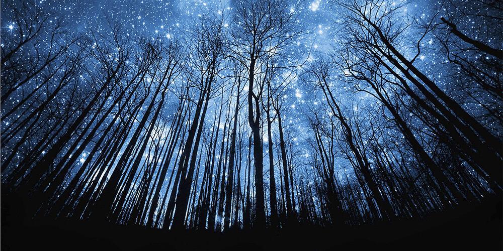 Regaib Gecesi, Gecelerden Bir Gecedir