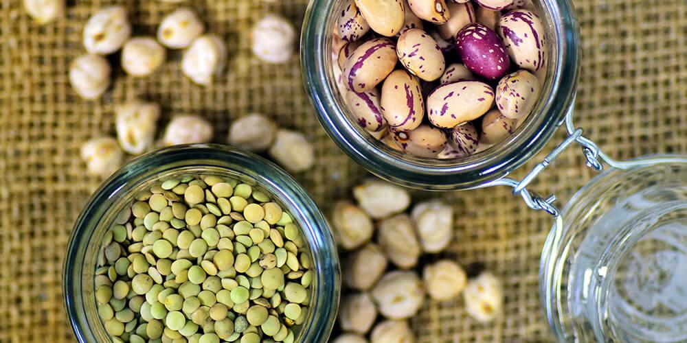 Tohum Üretiminde Dev Artış